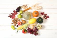 秋天收获菜,果子,坚果,在与室的白板背景采摘从农厂庭院和显示的种子新鲜 库存照片