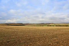 秋天收获风景 库存图片