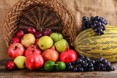 秋天收获,五颜六色的果子 免版税库存照片