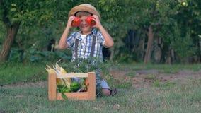 秋天收获,使用用在照相机的蕃茄的孩子在有菜的木箱子附近在庭院 股票视频