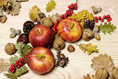 秋天收集五颜六色的南瓜表 库存图片
