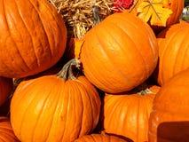秋天收集五颜六色的市场南瓜 免版税库存图片
