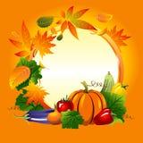 秋天收集四个季节向量 免版税库存照片