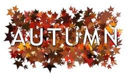 秋天文本,词被包裹和分层堆积与秋季叶子 背景查出的白色 免版税库存照片