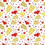 秋天无缝的样式用红色和橙色花楸浆果和叶子 也corel凹道例证向量 向量例证