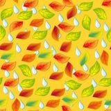 秋天无缝的模式。 免版税库存照片