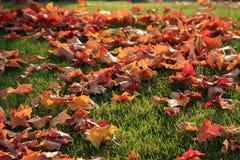 秋天日内瓦湖 库存照片
