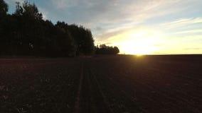 秋天日出在农田里,时间间隔 股票视频