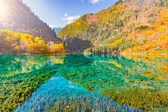 秋天日出时间的五Flower湖 九寨沟自然保护, 免版税库存照片