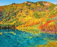 秋天日出时间的五Flower湖 免版税图库摄影