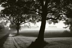 秋天日出通过雾 库存照片