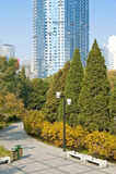 秋天日在城市公园 免版税库存图片