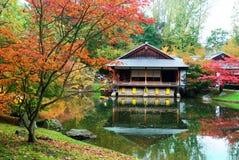 秋天日本人庭院 库存图片