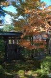 秋天日本 图库摄影