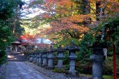 秋天日本 库存图片
