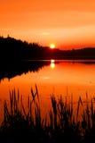 秋天日落在阿尔根金族公园 图库摄影