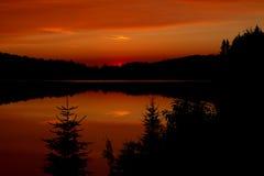 秋天日落在阿尔根金族公园 免版税图库摄影