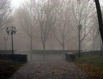 秋天早晨在公园 免版税库存照片