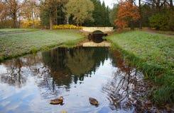 秋天早晨在凯瑟琳公园在Tsarskoe Selo 库存图片