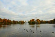 秋天早晨在凯瑟琳公园 图库摄影