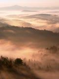 秋天早晨薄雾在森林上树梢的砂岩峭壁  库存照片