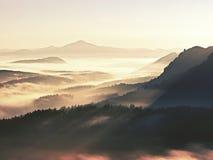 秋天早晨薄雾在森林上树梢的砂岩峭壁  图库摄影