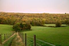 秋天早期的萨里 库存照片