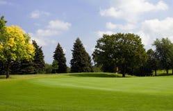 秋天早高尔夫球绿色 库存图片