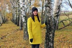 秋天时间:摆在反对一个秋季桦树森林的一件黄色外套的美丽的女孩 库存图片