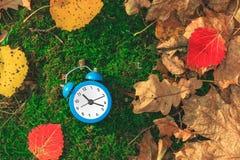 秋天时间 在地面上的下落的干燥叶子 五颜六色的叶子和闹钟 回到学校 折扣和销售 库存图片