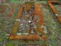 秋天时间在老被放弃的和被彻底搜索的犹太公墓 免版税库存照片