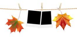 秋天时间在绳索和干燥槭树叶子别住的装饰、卡片 图库摄影
