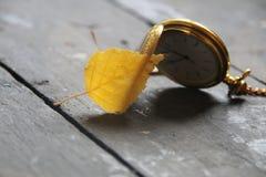秋天时间或11月想法 免版税库存图片