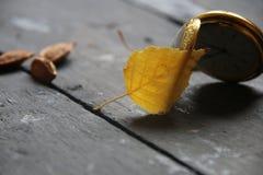 秋天时间或10月想法 图库摄影
