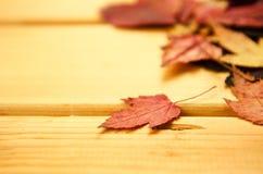 秋天时间装饰,干燥槭树留给pinnedrope晒衣夹,木背景 免版税图库摄影
