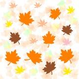 秋天明亮的叶子 皇族释放例证