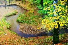 秋天明亮的颜色 莫斯科的本质 2017年 免版税库存图片
