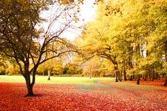 秋天明亮的风景 库存照片