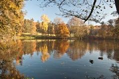 秋天有五颜六色的树的早晨池塘在公园在普劳恩市 免版税库存图片