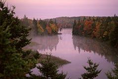 秋天有薄雾的日出 免版税库存照片