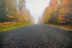 秋天有薄雾的路农村结构树 免版税库存照片