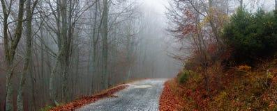 秋天有薄雾的路 免版税库存图片