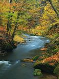 秋天有被弄脏的波浪的,新鲜的绿色生苔石头山河 库存图片