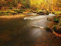 秋天有被弄脏的波浪的,新鲜的绿色生苔石头山河 免版税库存照片