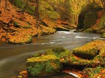 秋天有被弄脏的波浪的,新鲜的绿色生苔石头,五颜六色的秋天山河 免版税库存图片