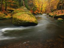 秋天有被弄脏的波浪的,新鲜的绿色生苔石头,五颜六色的秋天山河 图库摄影
