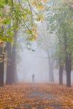 秋天有雾的孤独的人 库存照片