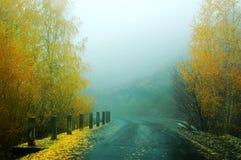 秋天有雾的早晨 免版税库存图片