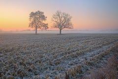 秋天有雾的横向 免版税库存图片