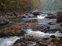 秋天有雾的河场面 免版税库存图片
